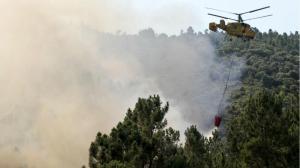 policia-judiciaria-ja-identificou-e-deteve-20-pessoas-pela-autoria-do-crime-de-incendio-florestal