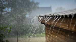 Resultado de imagem para Mau tempo: Casas inundadas em Álvares levam Câmara de Góis a rebentar dique